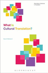 What Is Cultural Translation?