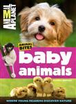 Animal Planet Baby Animals