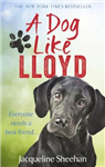 Dog Like Lloyd
