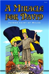 Miracle for David, A - Patron Saint of Wales