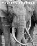 Walking Thunder: In the Footsteps of the African Elephant