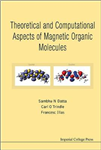 Theoretical And Computational Aspects Of Magnetic Organic Mo