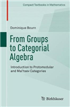 From Groups to Categorial Algebra: Introduction to Protomodular and Mal\'tsev Categories