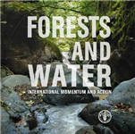 Forests and water: international momentum and action