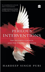 Perilous Interventions: The Security Council and the Politic
