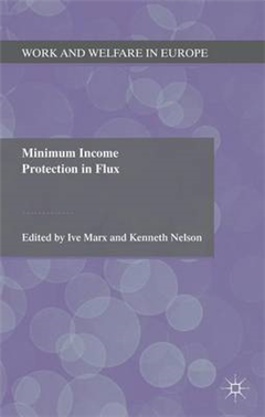 Minimum Income Protection in Flux