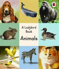 Ladybird Book: Animals