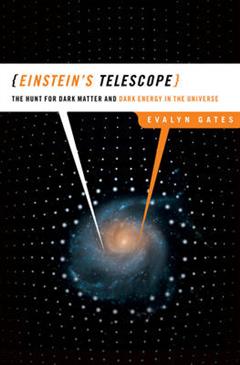 Einstein\'s Telescope: The Hunt for Dark Matter and Dark Energy in the Universe