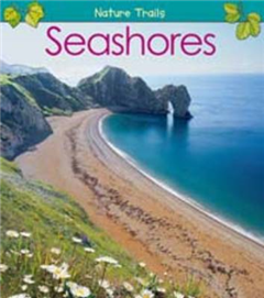 Seashores
