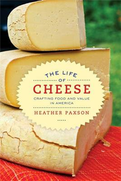 Life of Cheese