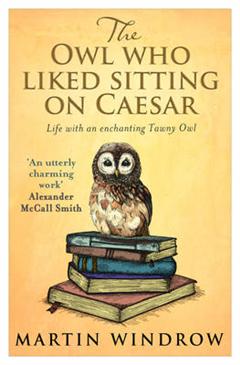 Owl Who Liked Sitting on Caesar