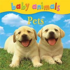 Baby Animals: Pets