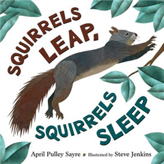 Squirrels Leap, Squirrels Sleep