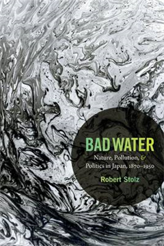Bad Water: Nature, Pollution, and Politics in Japan, 1870-1950
