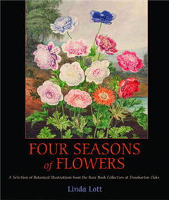Four Seasons of Flowers - A Selection of Botanical Illustrations from the Rare Book Collection at Dumbarton Oaks