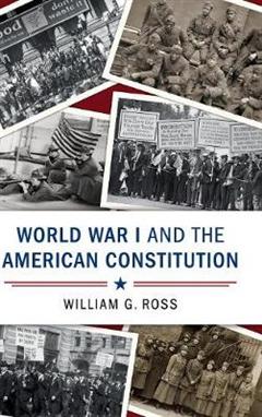Cambridge Studies on the American Constitution