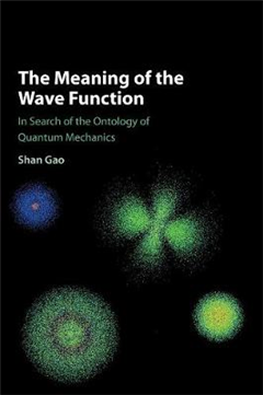 Meaning of the Wave Function