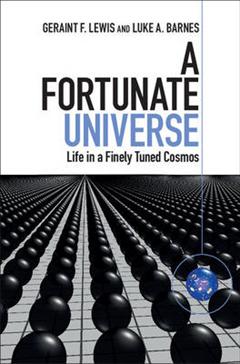 Fortunate Universe