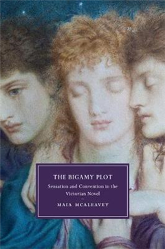 Bigamy Plot