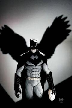 Batman Volume 2: The City of Owls HC The New 52