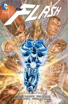 Flash Vol. 7