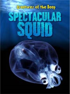 Spectacular Squid