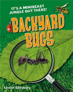 Backyard Bugs: Age 5-6, Below Average Readers