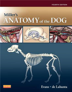 Miller\'s Anatomy of the Dog