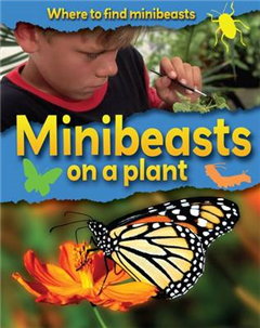 Minibeasts on a Plant