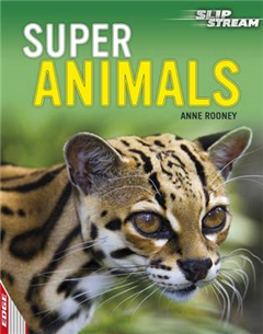 EDGE: Slipstream Non-Fiction Level 1: Super Animals