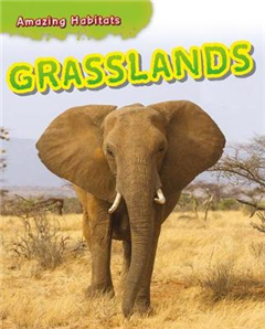 Amazing Habitats: Grasslands
