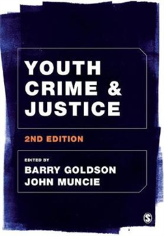 Youth Crime and Justice