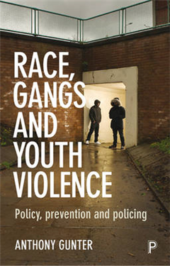 Race, Gangs and Youth Violence: Policy, Prevention and Policing
