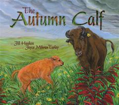Autumn Calf