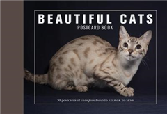 Beautiful Cats Postcard Book: 30 Postcards of Champion Breeds to Keep or to Send