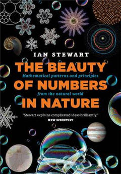 The Beauty of Numbers in Nature: Mathematical patterns and principles from the natural world