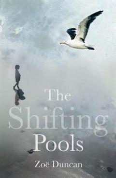 Shifting Pools