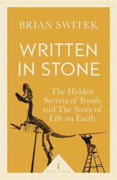Written in Stone Icon Science