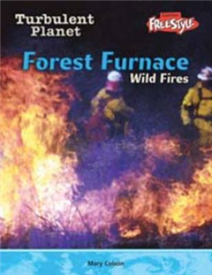 Forest Furnace