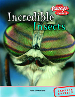 Freestyle Express Incredible Creatures Insects Hardback