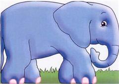 Elephant: Chunky Animals