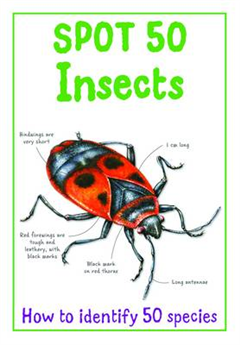 Spot 50 - Insects