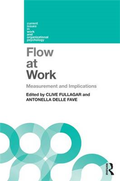 Flow at Work: Measurement and Implications