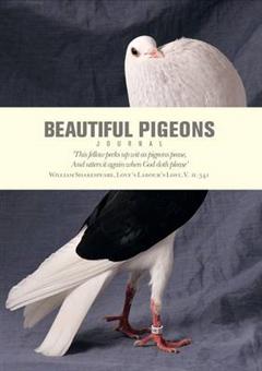 Beautiful Pigeons Journal