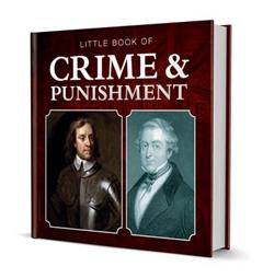 Little Book of Crime & Punishment. Michelle Brachet