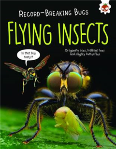 Flying Insects - Record-Breaking Bugs