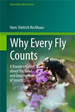 Why Every Fly Counts: A Documentation about the Value and Endangerment of Insects