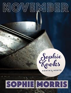 Sophie Kooks Month by Month November