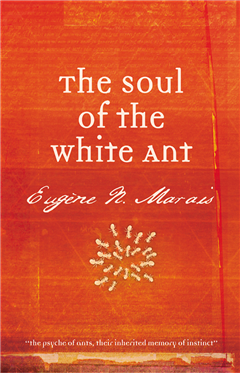 Soul of the White Ant, The