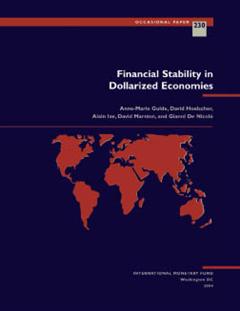 Financial Stability in Dollarized Economies